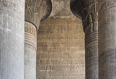 Columns in an ancient egyptian temple Royalty Free Stock Image