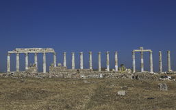 Columns of the ancient Laodicea Stock Photo