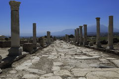 Columns of the ancient Laodicea Royalty Free Stock Photography