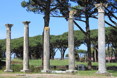 Columns of an ancient roman temple Stock Image