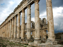 Columns of antique Apamea Royalty Free Stock Photos