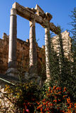 Columns at baalbek. Columns at the anicent roman city of baalbek in lebanon royalty free stock image