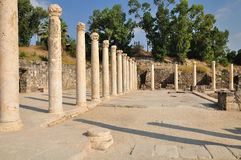 Columns of Beit-Shean. Royalty Free Stock Photo