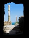 Columns in Carthage. Roman Columns in Carthage, Tunisia royalty free stock photos