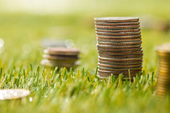 The columns of coins on grass Stock Photo