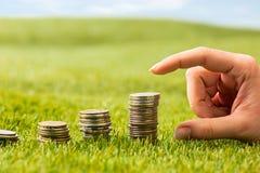 The columns of coins on grass Stock Photos