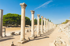 Columns in Ephesus Royalty Free Stock Photography