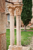 Columns in Fontcaude Abbey. Closeup of columns in Fontcaude Abbey - Languedoc-Roussillon - France stock photos