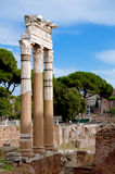 Columns at foro romano - Roma - Italy Stock Images