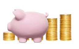Columns of gold coins and piggy bank isolated on white Stock Photography