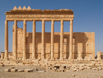 Columns on historic ruins, Palmyra, Syria Stock Image