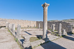 Columns House at Volubilis, Morocco Royalty Free Stock Photos