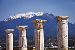 Columns at Laodicea in Turkey Royalty Free Stock Image