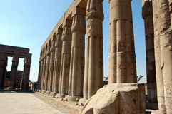 Columns, Luxor Temple Stock Photography