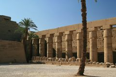 Columns at Luxor Temple, Egypt royalty free stock images