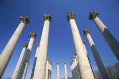 Columns in National Arboretum Stock Photo