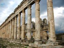 Columns Of Antique Apamea Royalty Free Stock Photos