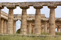 Columns at Paestum. Remains of the ruined ancient Greek agora at Paestum in Campania, Italy Royalty Free Stock Photos