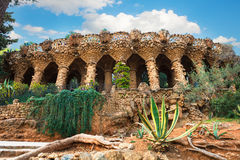 Columns in Park Guell designed by Antoni Gaudi in Barcelona, Spain. Columns among the trees made of stone in Park Guell designed by Antoni Gaudi in Barcelona royalty free stock photography