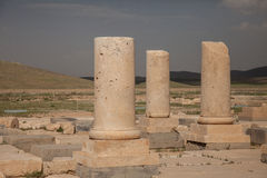 Columns, pasargadae, iran Stock Image