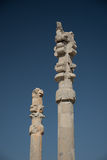 Columns in Persepolis royalty free stock photography