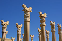 Columns of Persian Horses Stock Photo