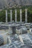 Columns of Priene Stock Images