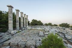 Columns of Priene Royalty Free Stock Photos