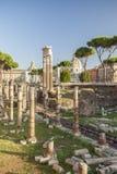 Columns of Rome Forum Royalty Free Stock Photos