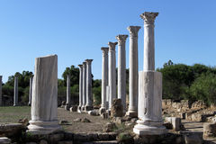 Columns in Salamis Stock Image