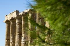 Columns Selinunte Stock Photo