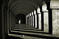 Columns and shadows Stock Image