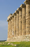 The columns of Sicily Stock Images