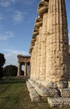 Paestum Columns of the temple Stock Images