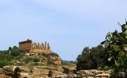 Columns Temple of Hera Stock Photography