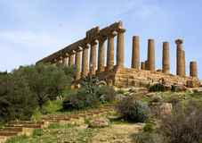 Columns Temple of Hera Royalty Free Stock Photography
