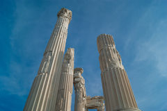 Columns of the Temple of Trajan Royalty Free Stock Images
