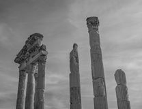 Columns of the Temple of Trajan Stock Image