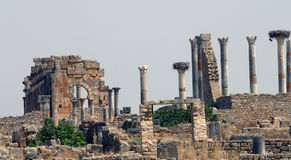 Columns of Volubilis 2 Stock Image