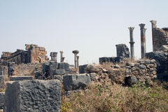 Columns of Volubilis 3 Royalty Free Stock Photos