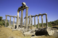 Columns of Zeus at Euromos was an ancient city in Caria Anatolia Turkey Royalty Free Stock Image