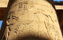 Coluna com imagens e hieroglyphics antigos de Egipto Foto de Stock