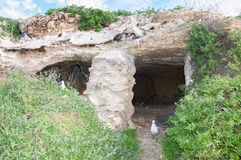 Coluna da caverna da pedra calcária imagem de stock royalty free