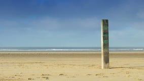 Coluna de madeira na praia 4K video estoque