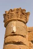 Coluna de um palácio antigo fotos de stock
