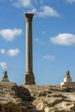 A coluna do Pompey magnífico em Alexandria em Egito fotografia de stock