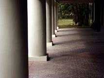 Colunas altas imagens de stock