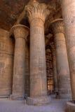 Colunas altas de Magnificient no templo de Khnum, Egipto Imagem de Stock Royalty Free