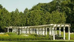 Colunas brancas Imagem de Stock
