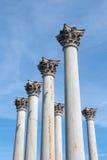 Colunas da construção do Capitólio do Estados Unidos fotos de stock royalty free